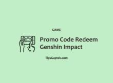 Promo Codes Game Genshin Impact