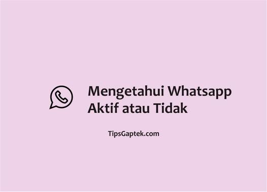 cara mengetahui whatsapp aktif atau tidak