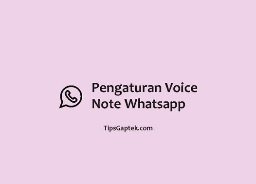 pengaturan voice note whatsapp